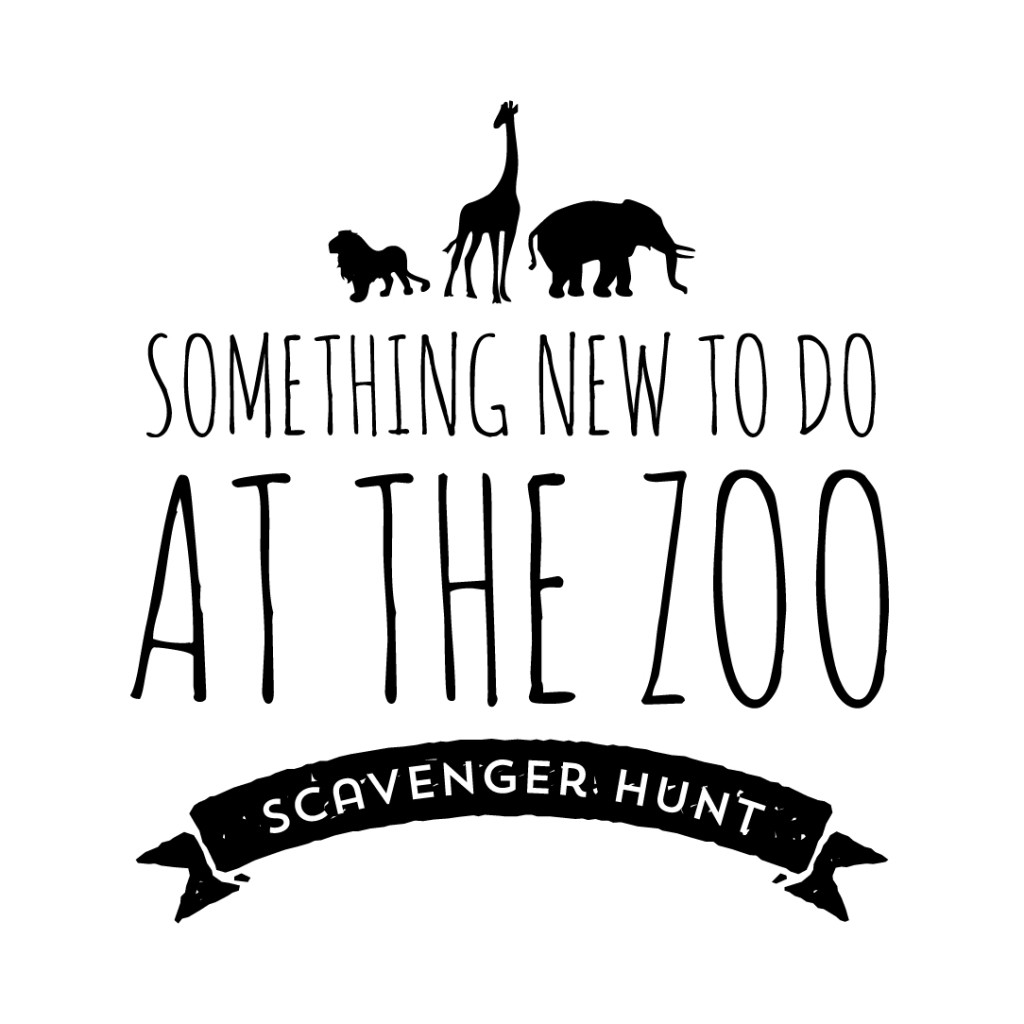 zoo scavenger