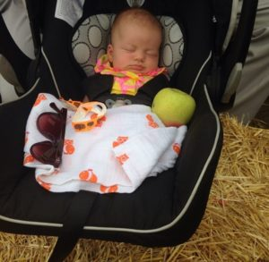 Even the smallest of family members can pick apples :)