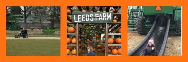pumpkin patch leeds