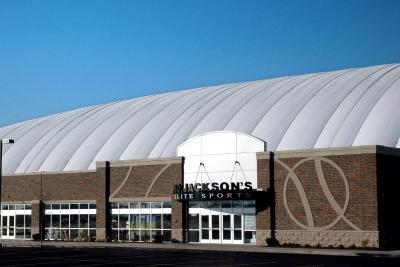 Bo Jackson's Sports