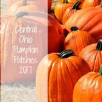 Central Ohio Pumpkin Patches 2017