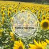 Yellow Springs