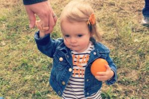 Fall Toddler Activities