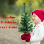 Columbus Area Christmas Tree Farms