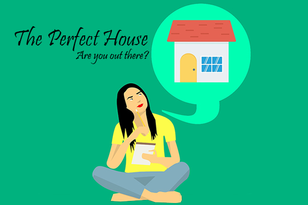searching for the perfect house