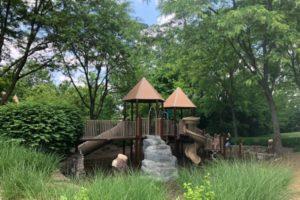 shaded park