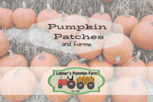 2019 Pumpkin Patches and Farms