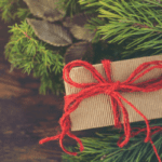 20 Ways to have a Stress-Free Holiday