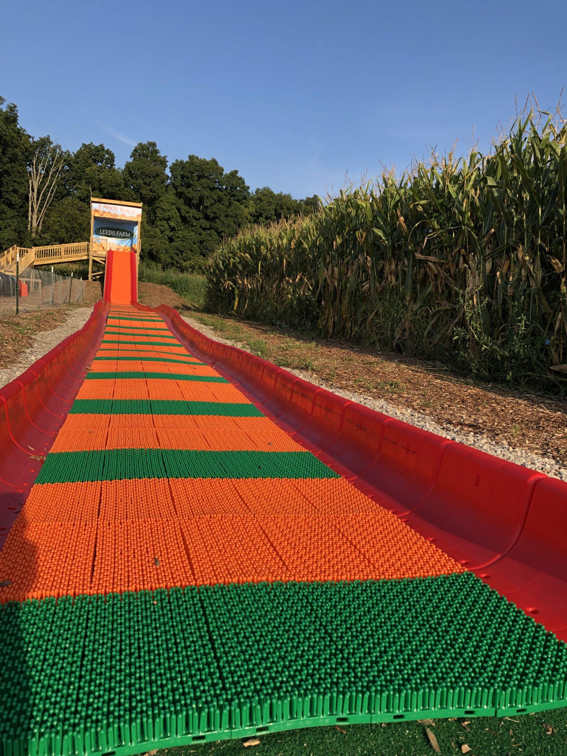 Leeds Farm Slide