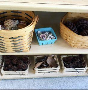 Nature station shelves