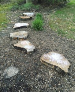 stepping wood slices