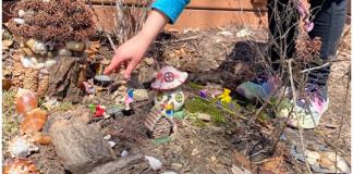 creating a fairy garden in your yard