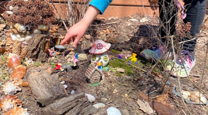 creating a fairy garden in your yard