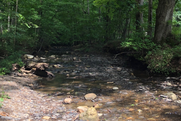 creeking in Columbus