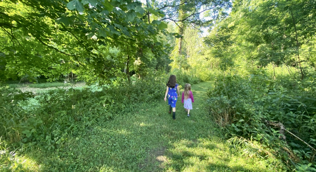 nature trail in Galena