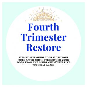 Fourth Trimester Logo 2